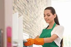 Título Profesional Básico en Actividades Domésticas y Limpieza de Edificios