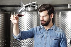 Técnico en Aceites de Oliva y Vinos